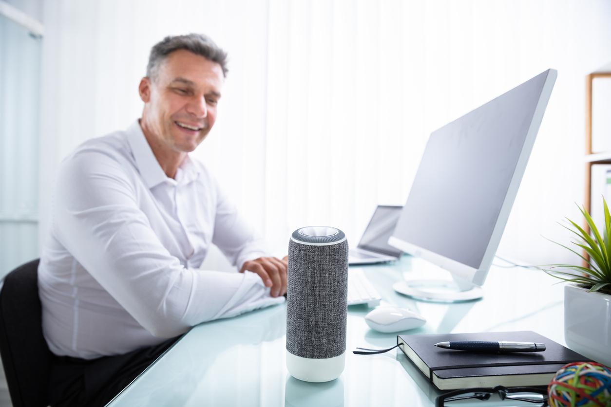 Nordiska kunder vågar inte näthandla med rösten