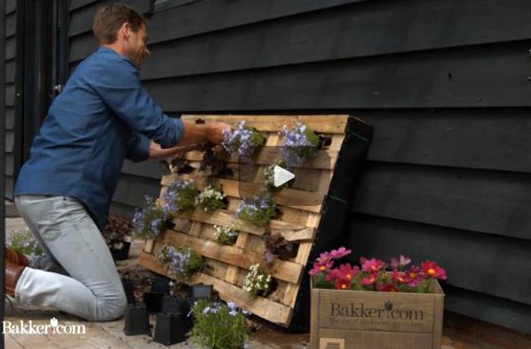 Trädgårdshjälp i videoformat när Bakker.com digitalsatsar