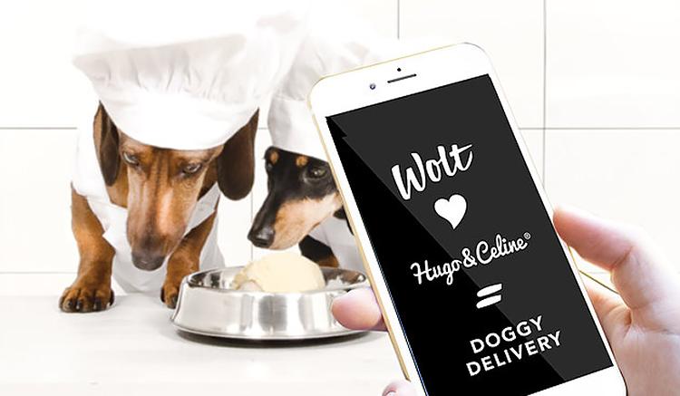 Nytt samarbete fixar hundglass direkt i appen