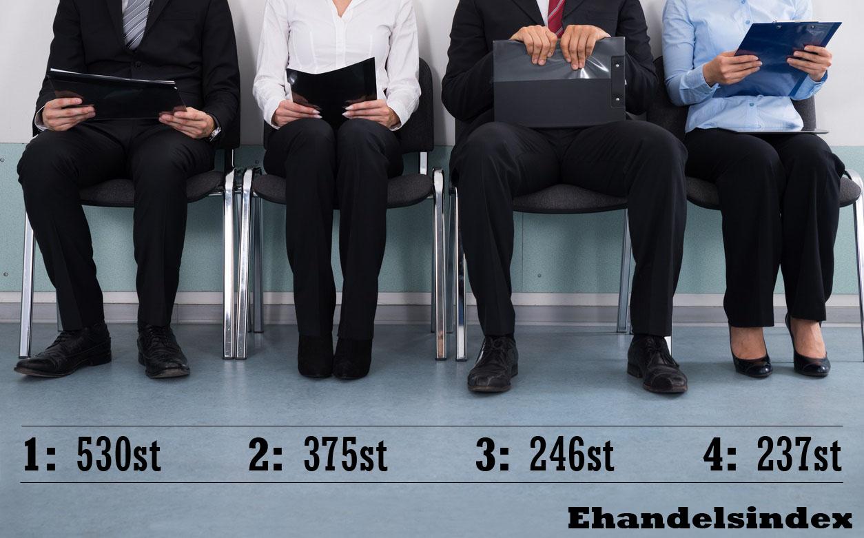 E-handlarna med flest anställda